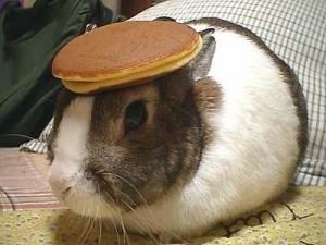 bunny_pancake-300x225